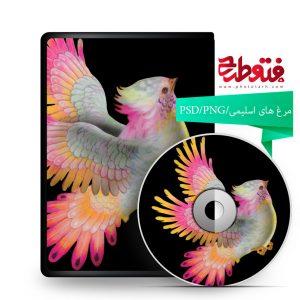 g 2 300x300 - بیش از چهل تصویر مرغهای اسلیمی